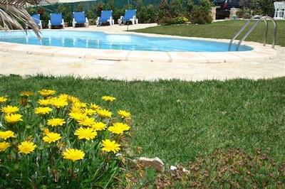 Belle maison face à la mer à Azenhas do Mar, près des plages, caca privée