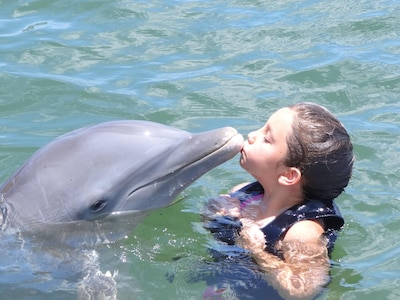 True Love, a la Cayman! -Sarah Kissing Dolphin -just one of our many attractions