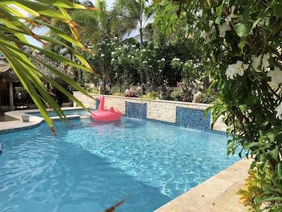 Swimming Pool redo 10/2017