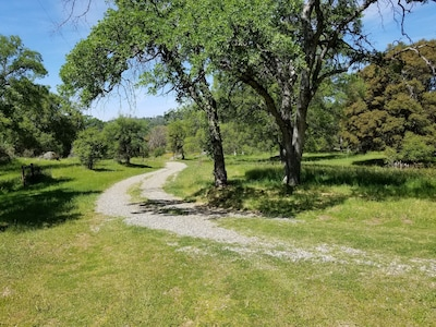 Springtime view of the private road leading to the retreat.