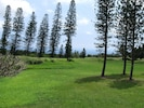 View of 11th green from back yard
