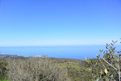 Togna, Sari-Solenzara, Corse-du-Sud, France