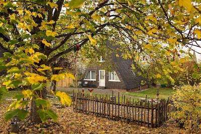 Arrondissement du Haut-Sauerland, Rhénanie-du-Nord-Westphalie, Allemagne