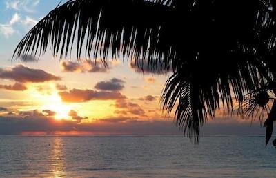 Palma Real, Puerto Morelos, Quintana Roo, Mexico