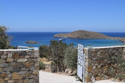 Delfini, Syros, Egeo Meridionale, Grecia