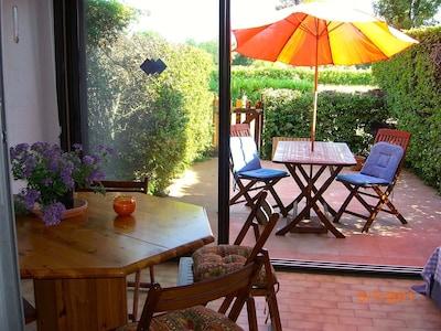 Sun room and garden