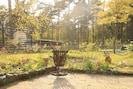 Blick von Terrasse Richtung Garten