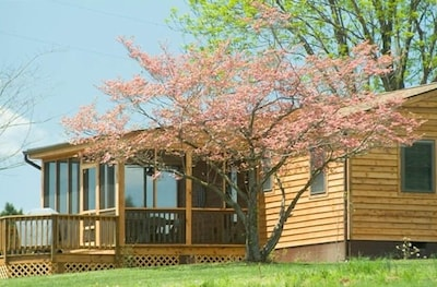 'Pond House' on Huge Horse Farm; Great for Young Families: Escape the City.