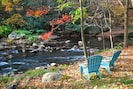 Back yard of Brownie in the fall on Savage River