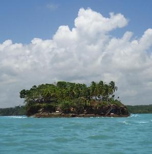 Bocal Island