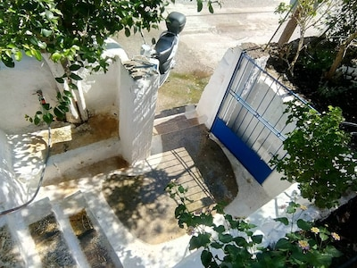 Gate and steps to the garden