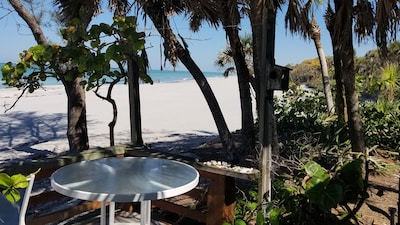 View of the beach from the deck, looking north.