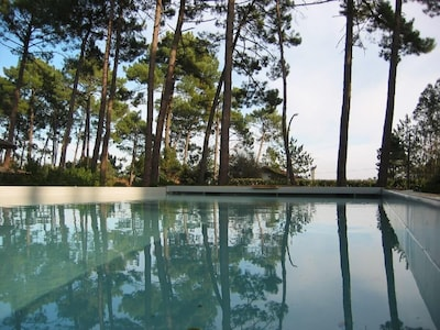 Vue de la piscine chauffée (5 X 10 m)