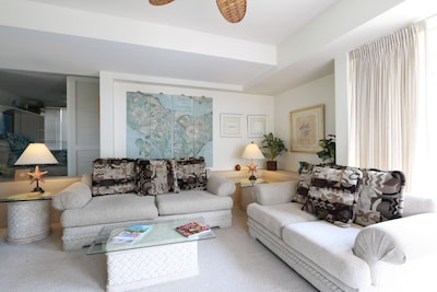 Living room with pull out sofa.