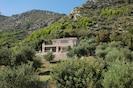 Main house amongst the olive groves