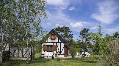 Souvigny-en-Sologne, Loir-et-Cher, France