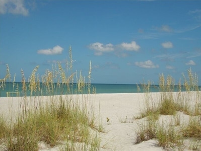 Beach with turtle nest on the left side of the photo.