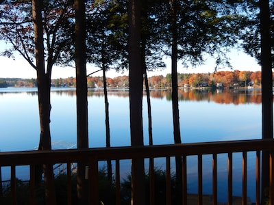 Forêt d'État Tolland, Otis, Massachusetts, États-Unis d'Amérique