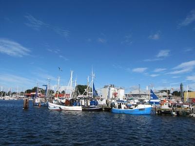 Burgstaaken, Fehmarn, Schleswig-Holstein, Deutschland