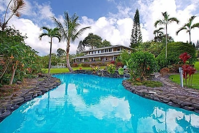 Lagoon style pool with 3 waterfalls, kiddie pool and hot tub