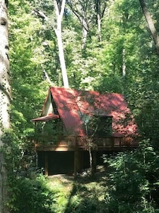 Affordable, sleeps 4. Close to town/so many waterfalls, hikes, rafting, fishing!