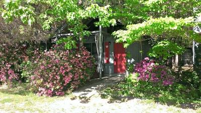 Front Door View of Cabin