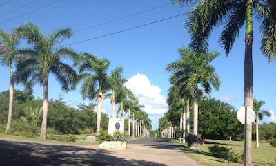 Half mile long allee of Royal Palms leads to a little piece of paradise.