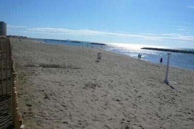 Grande plage surveillée à 50m