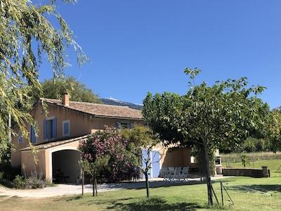 Ferienhaus / Villa - Bedoin