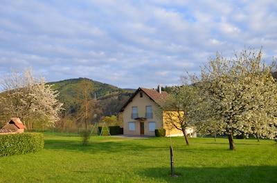 La Vancelle, Bas-Rhin (département), France