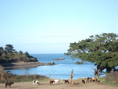mer à proximité du gîte