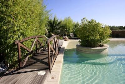 Vue de la piscine du Mas  ...Petit Pont CAMILLE
