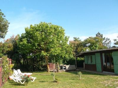 Saint-Vivien-de-Médoc, Gironde (département), France