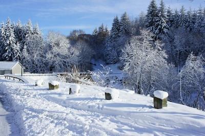 Vue Est hiver