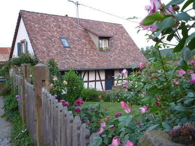 Waldolwisheim, Bas-Rhin, France
