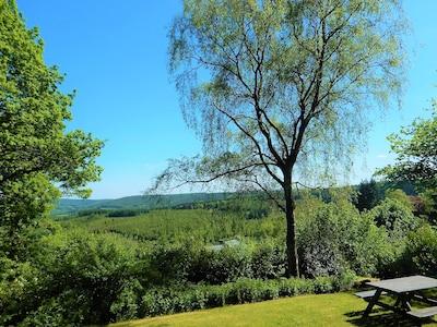 vue panoramique depuis la terrasse de la maison