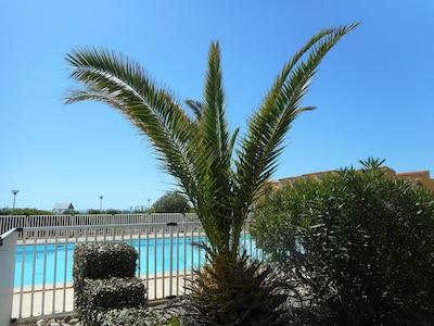 piscine dans la résidence