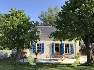 Domaine Jean-Maurice Raffault, Savigny-en-Veron, Indre-et-Loire, France