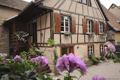 Bergheim, Haut-Rhin (département), France