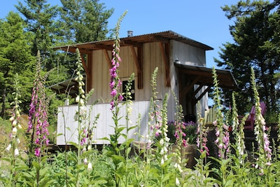 Architect Designed Cabin in the Woods, Pender Island