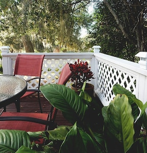 View on the deck