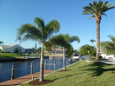 Peaceful Palms grace the Northern end of our 100 Foot Dock