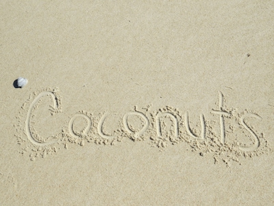 Stay at Coconuts and walk to the beach!