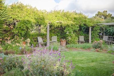 Pergola - front garden