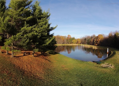 View of the lake and pine tree grove in the fall. Shallow end of lake this side.