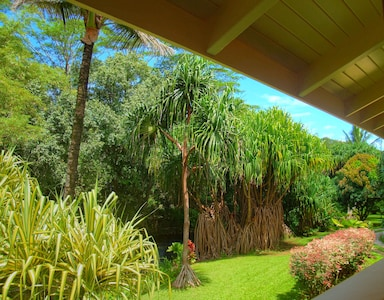 The view from the Lanai down to the garden and the river. Giant Lauhala trees.