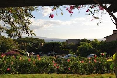 View from Main Lanai