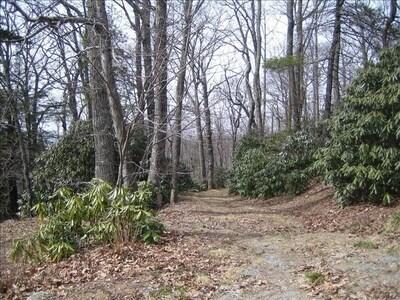 Trails outside cabin