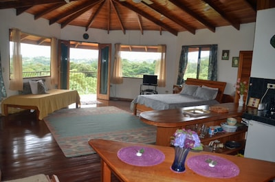 Upstairs master suite has balcony with view of lake and jungle
