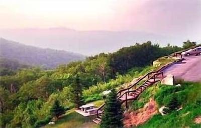 Scenic Mountain View from Condo (copyright WM Partnership)